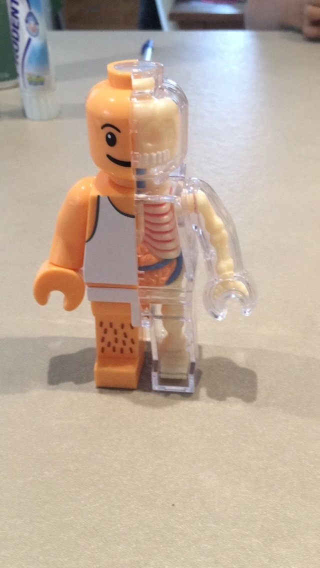 lego-skeleton-spiffy-board