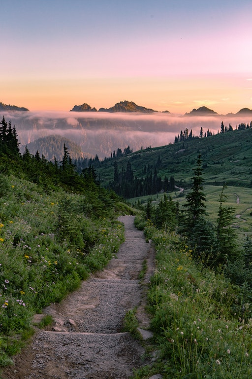 A windy trail in Paradise, Mt. Rainier Natl Park - IllegalPretzels - bit.ly:2yy5lsB