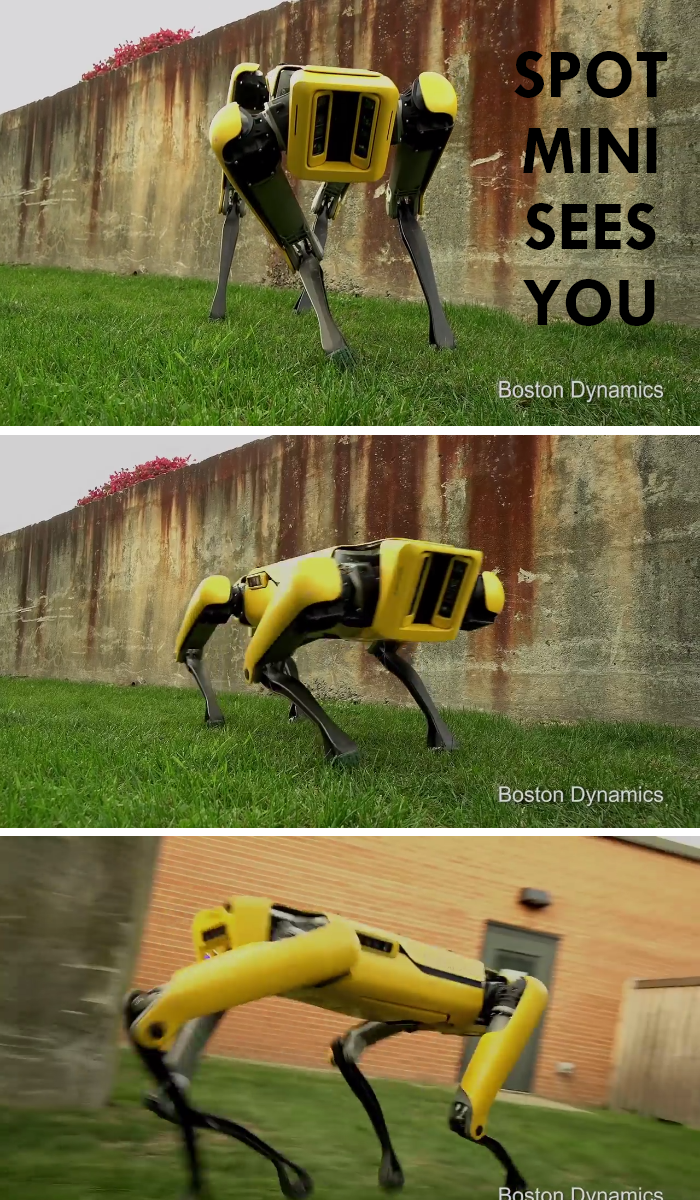 Video: SpotMini Robot looks like it came out from a movie