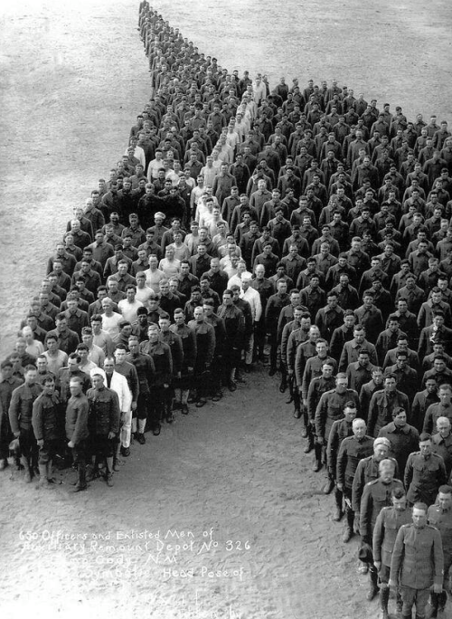 US troops stand in tribute to the 8 million horses and mules that died in WWI, 1910s - dickfromaccounting - bit.ly2F9KkqM