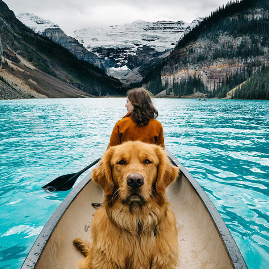 Human Takes His Dog On Epic Adventures, Proves That Dogs Are The Best Travel Buddies - EleanoreZajicek - bit.ly2w1vPlm