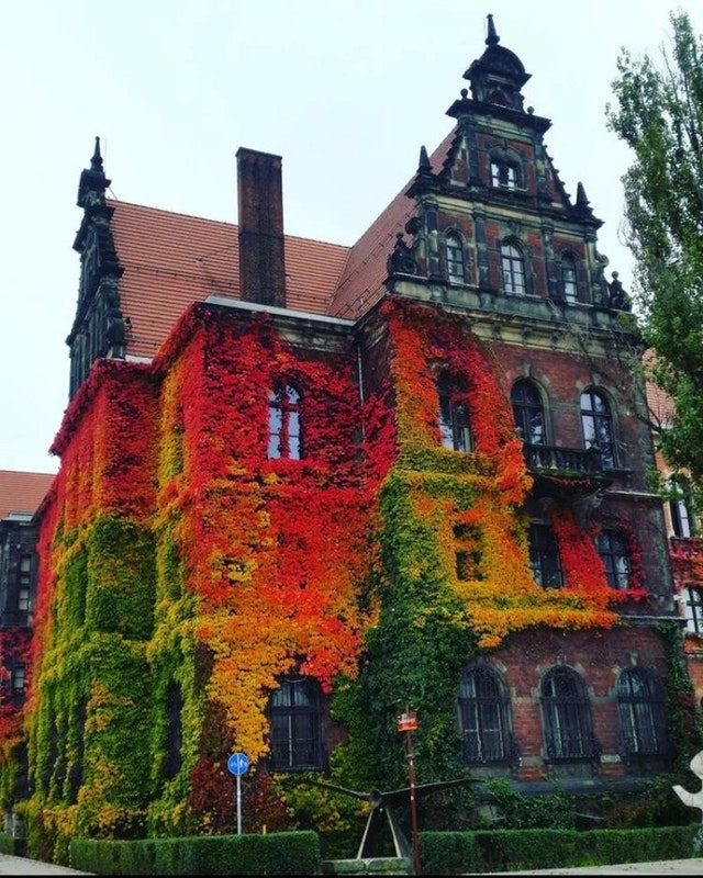 Museum of National history, Wroclaw, Poland - billionnet - bit.ly2mB4Fdx