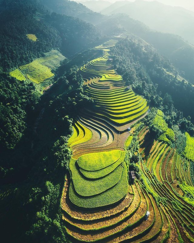 The terraced farms of Vietnam