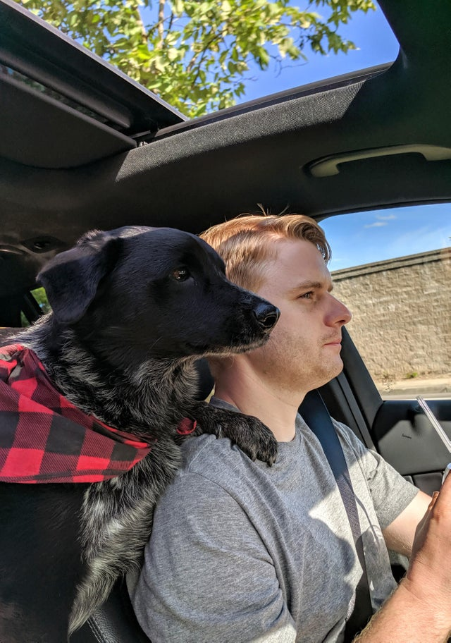 Going from never wanting a dog, to having the best four legged Copilot