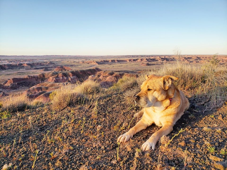 My old lady on the edge of the Painted Desert, Arizona