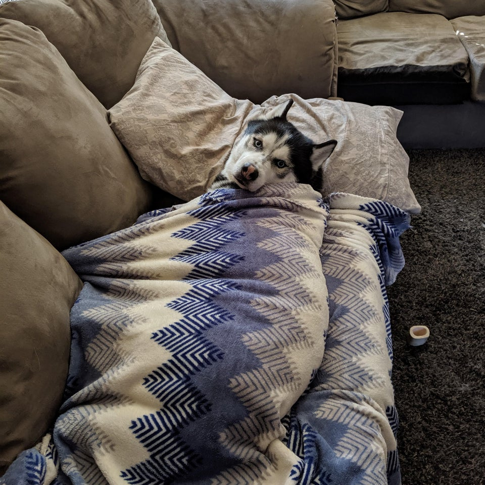 He has to be tucked in before I go to work or he cries when I leave