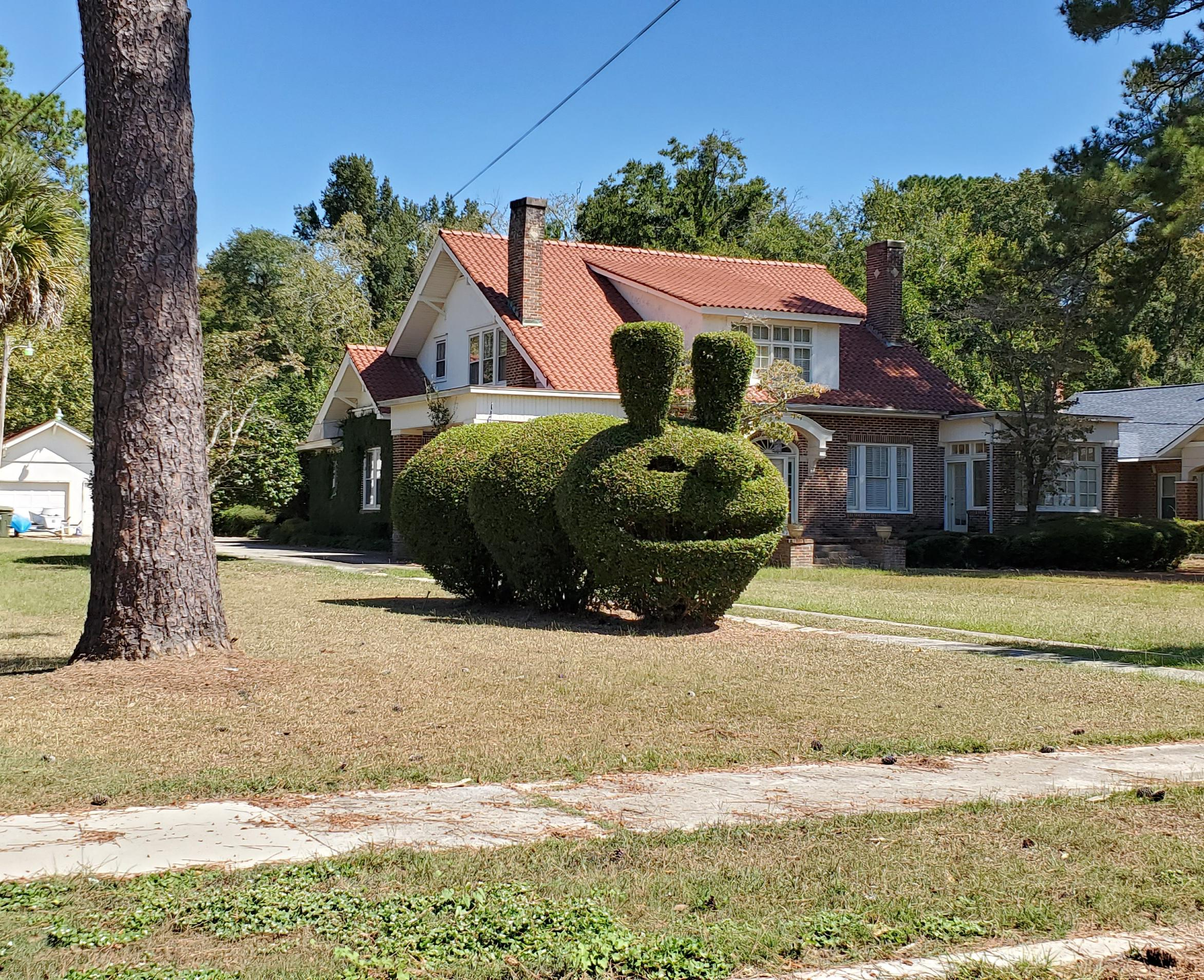 These bushes I saw today on my drive home