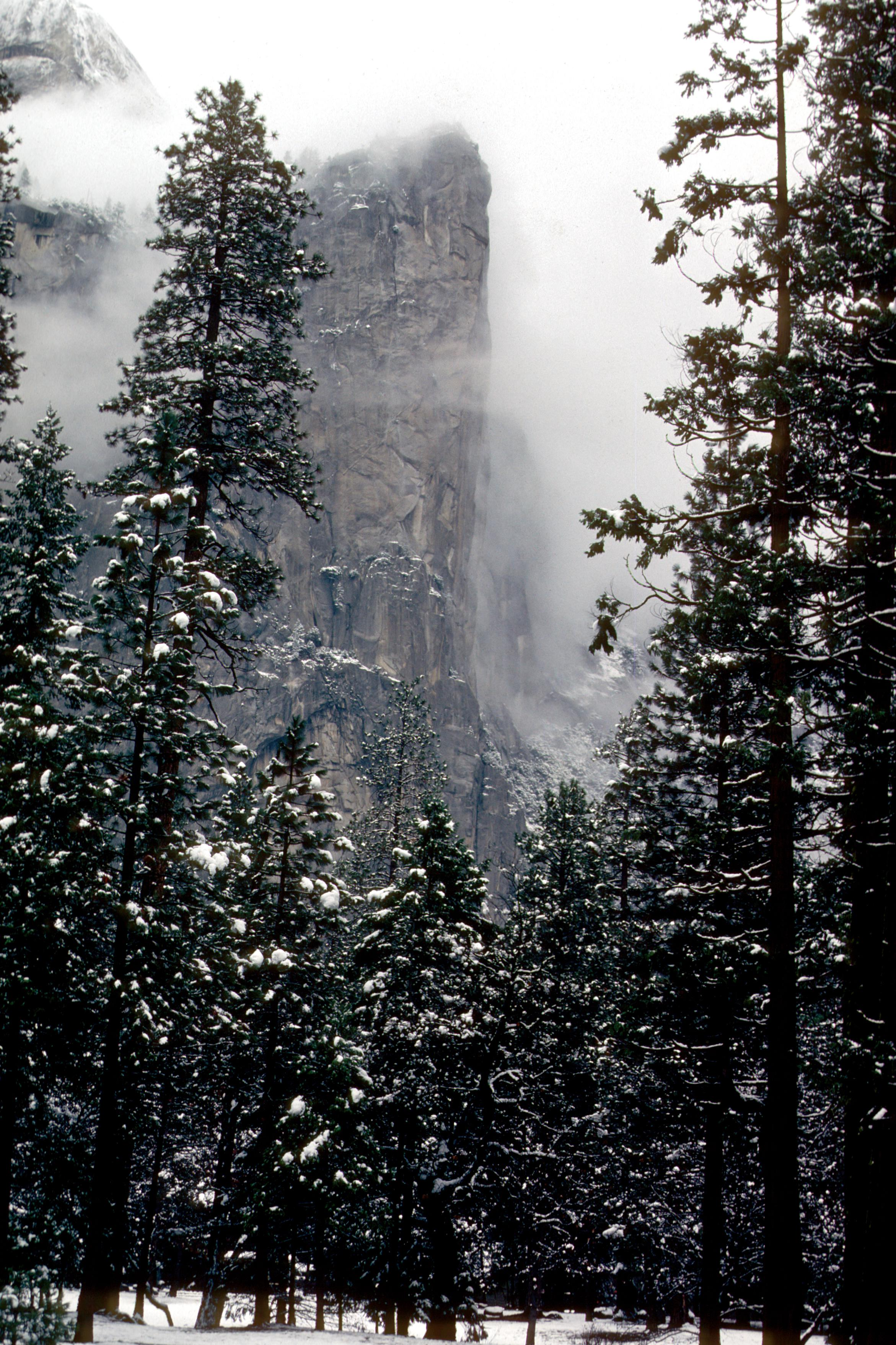 Yosemite during snowstorm