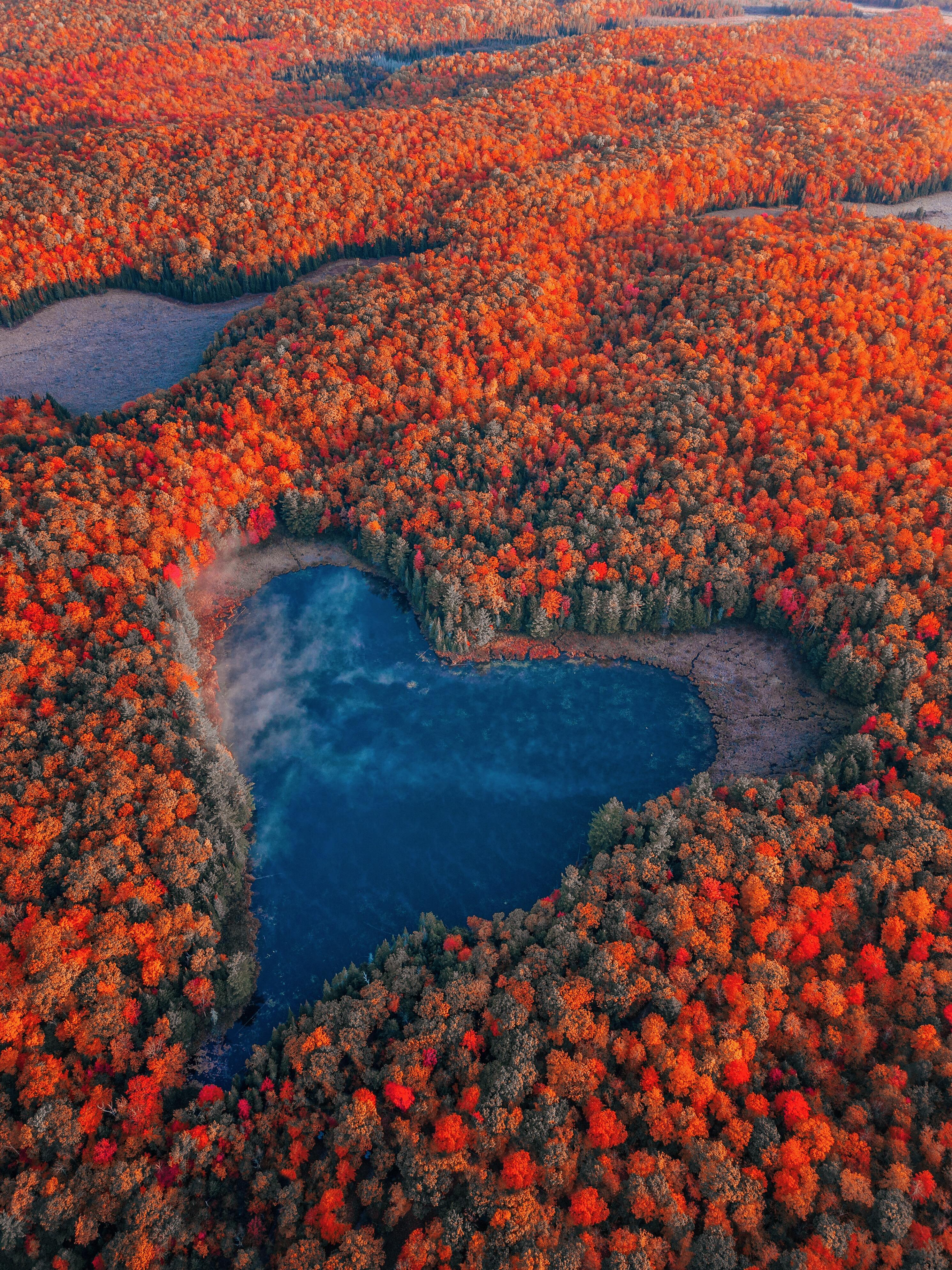 Beautiful heart shaped natural lake surrounded by fall foliage in Ontario, Canada